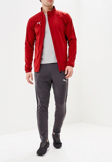 Купить Костюм PUMA - цвет: красный, серый, Вьетнам, PU053EMAMTX6